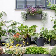 Greenify_Udendoers_planter_altan_faelles