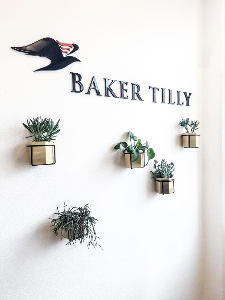BakerTilly_kontorbeplantning_17