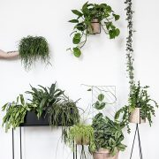greenify-image-inspiration-2017-plante-tendenser-haengeplanter-plantbox-