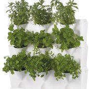 Minigarden-vertical-krydderurter