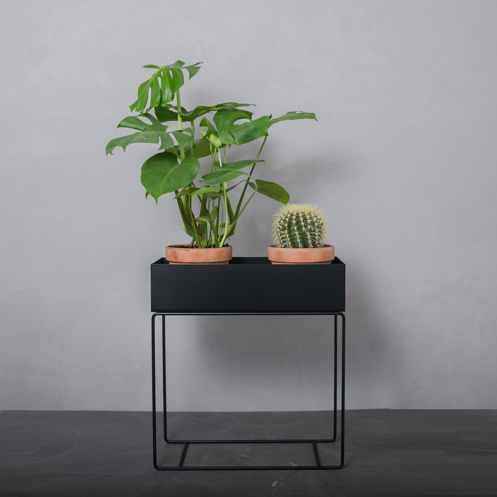 ferm plant box leveret direkte hjem til dig fra greenify. Black Bedroom Furniture Sets. Home Design Ideas