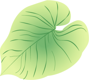 planteguide2_lysmangel