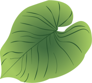 planteguide2_overvanding
