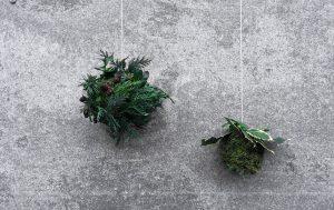 Grønne julekugler i gran og mos