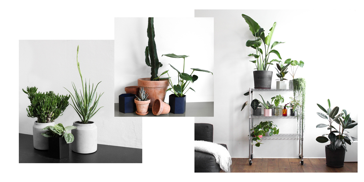 5-nemme-tips-til-indretningen-greenify